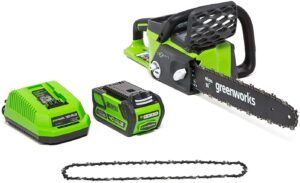 Greenworks Electric Chainsaw