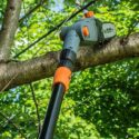 Top 10 Best Pole Saw 2020 - Expert Review & Guide