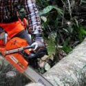 Top 10 Best Gas Chain Saw 2020 - Expert Review & Guide